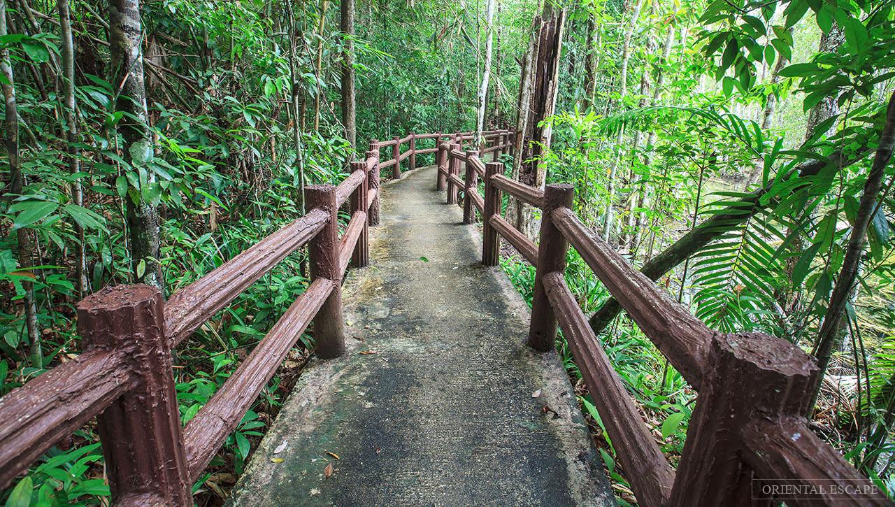 ghé khu bảo tồn khao pra bang khram là một trong những kinh nghiệm đi krabi