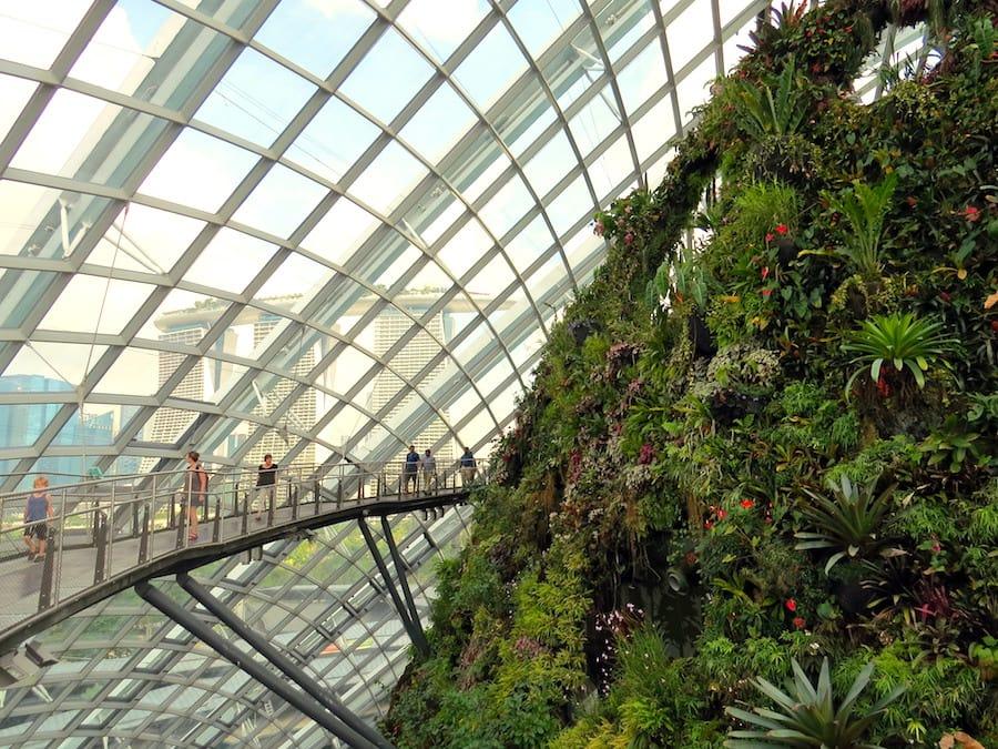 đến khu nhà kính cloud forest trong chuyến du lịch singapore 3 ngày 2 đêm