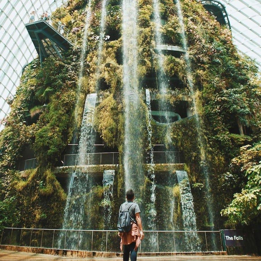 đến cloud forest trong chuyến du lịch singapore 3 ngày 2 đêm
