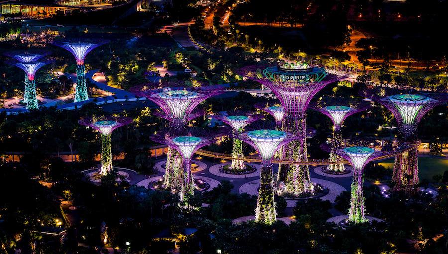 ngắm supertree grove vào ban đêm trong chuyến du lịch singapore 3 ngày 2 đêm