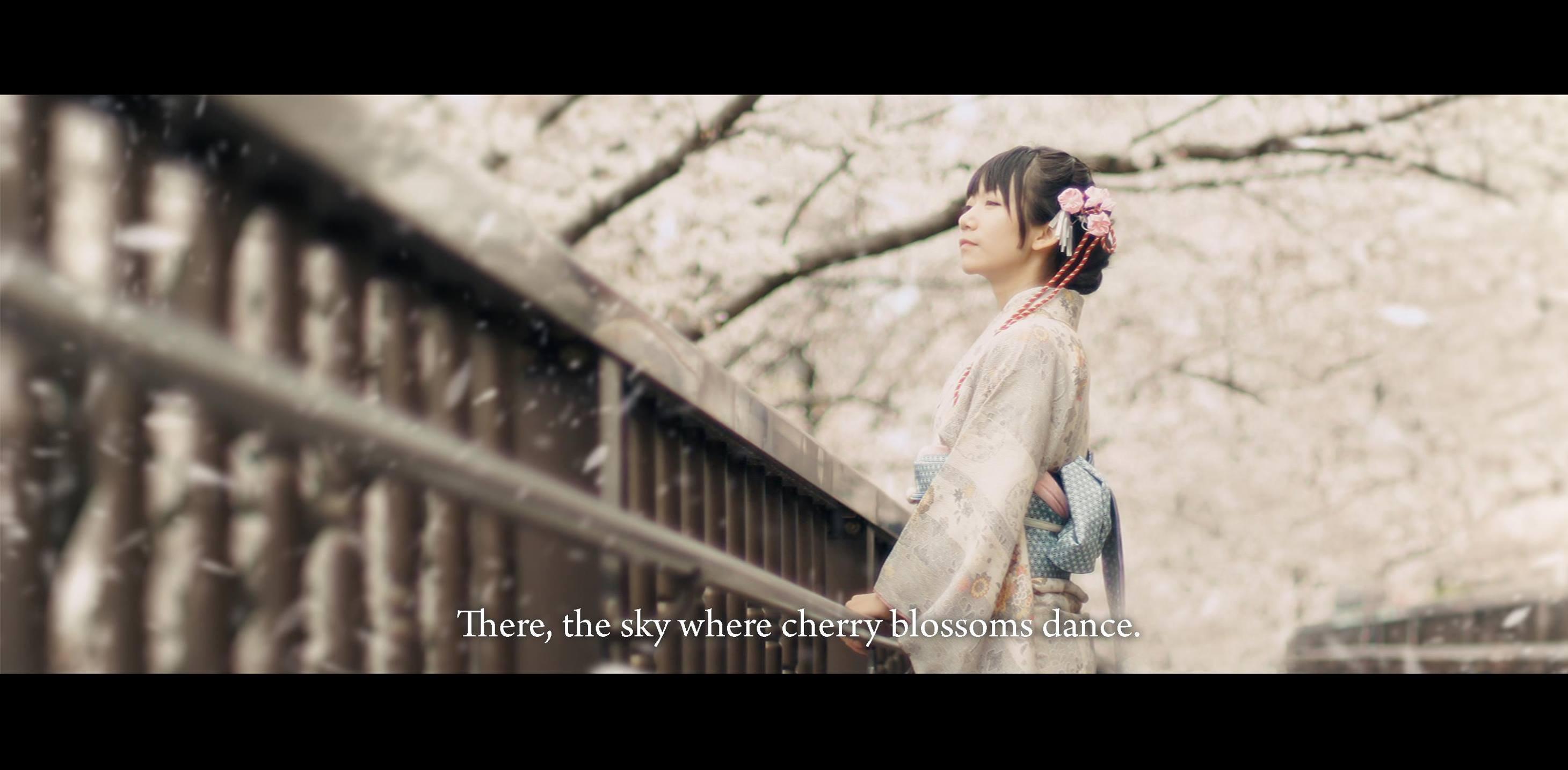 mặc kimono ngắm hoa anh đào