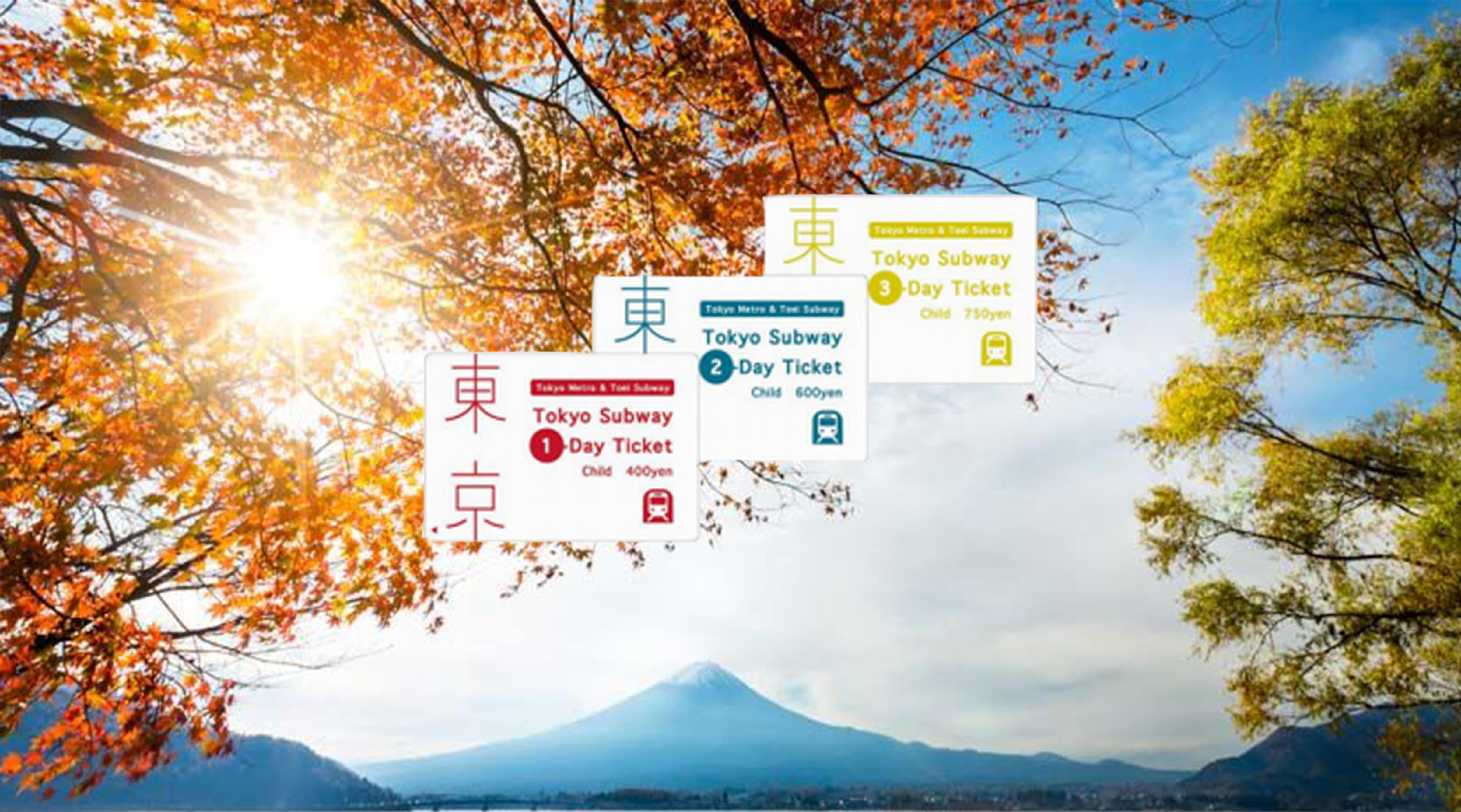 hoạt động săn hoa anh đào ở nhật bản: vé tàu điện ngầm tokyo