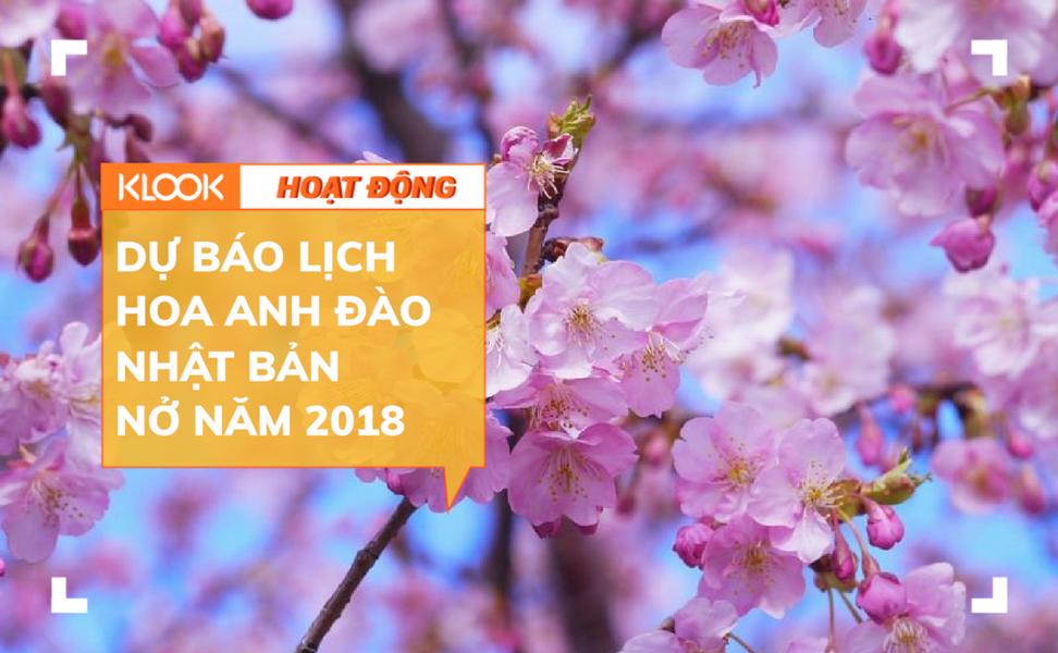 Năm 2018 ngắm hoa anh đào Nhật Bản thì đi thành phố nào và thời gian nào? 1