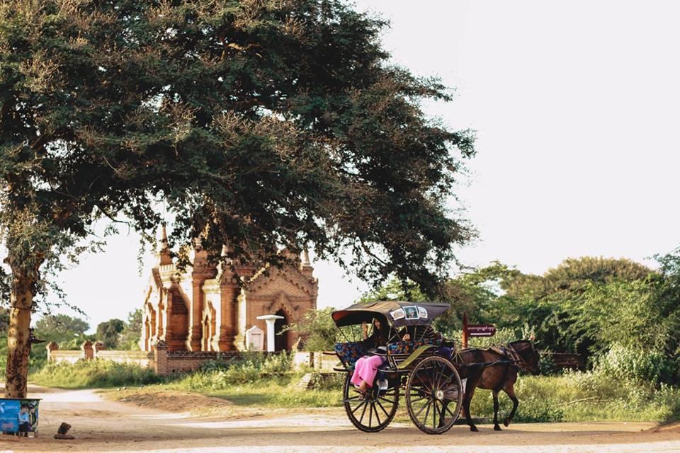 du lịch bagan - xe ngựa kéo là một phương tiện phổ biến