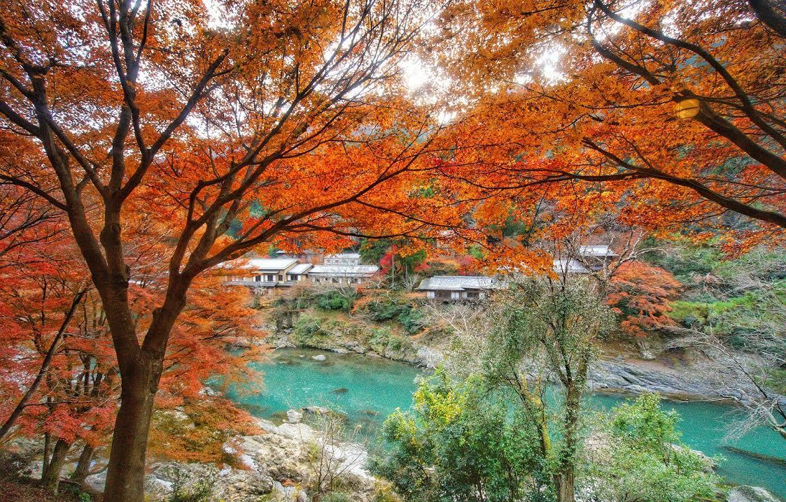 ngắm lá đỏ ở arashimaya trong lịch trình ngắm mùa thu ở kyoto
