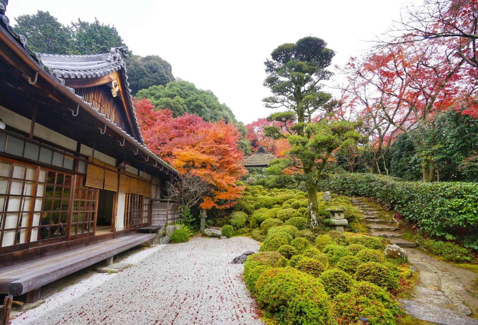 một ngôi chùa ở ngoại ô trong lịch trình ngắm mùa thu ở kyoto