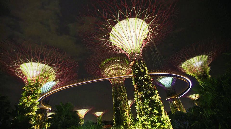 trải nghiệm singapore 4 ngày 3 đêm: gardens by the bay