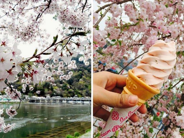 công viên arashimaya là một địa điểm ngắm hoa anh đào