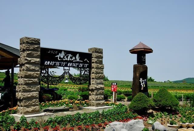 ghé đồi shikisai trong lịch trình du lịch sapporo bằng JR Pass