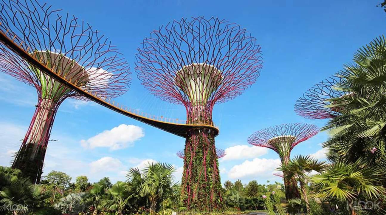 ghé gardens by the bay trong lịch trình du lịch singapore 3 ngày dành cho gia đình