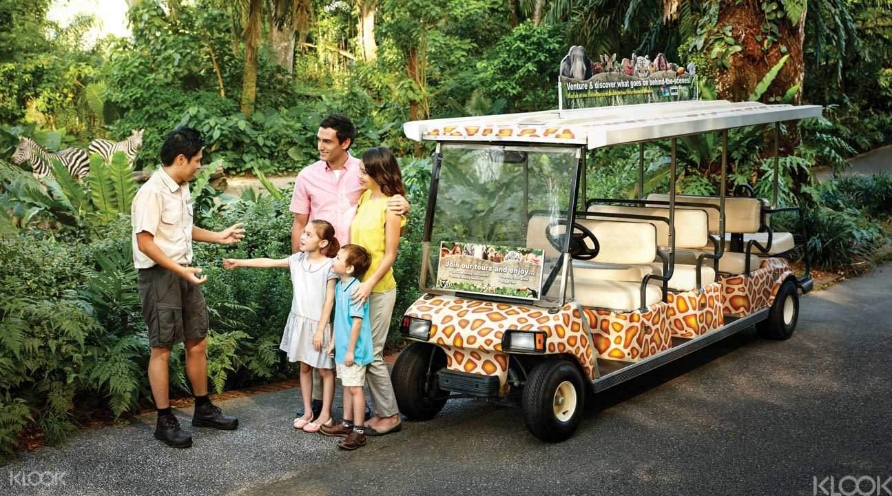 vui chơi tại singapore zoo trong lịch trình du lịch singapore 3 ngày dành cho gia đình