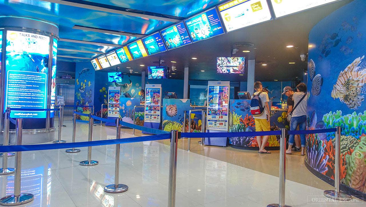 Bí kíp khám phá thuỷ cung SEA Life Bangkok Ocean World 2