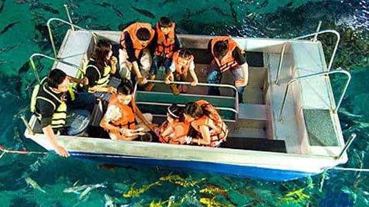 Bí kíp khám phá thuỷ cung SEA Life Bangkok Ocean World 22