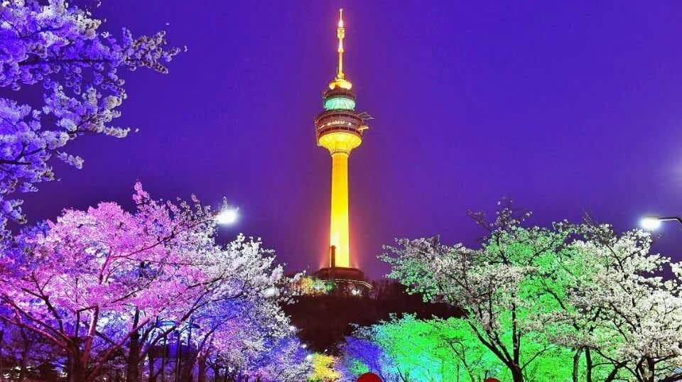 tháp N Seoul vào ban đêm
