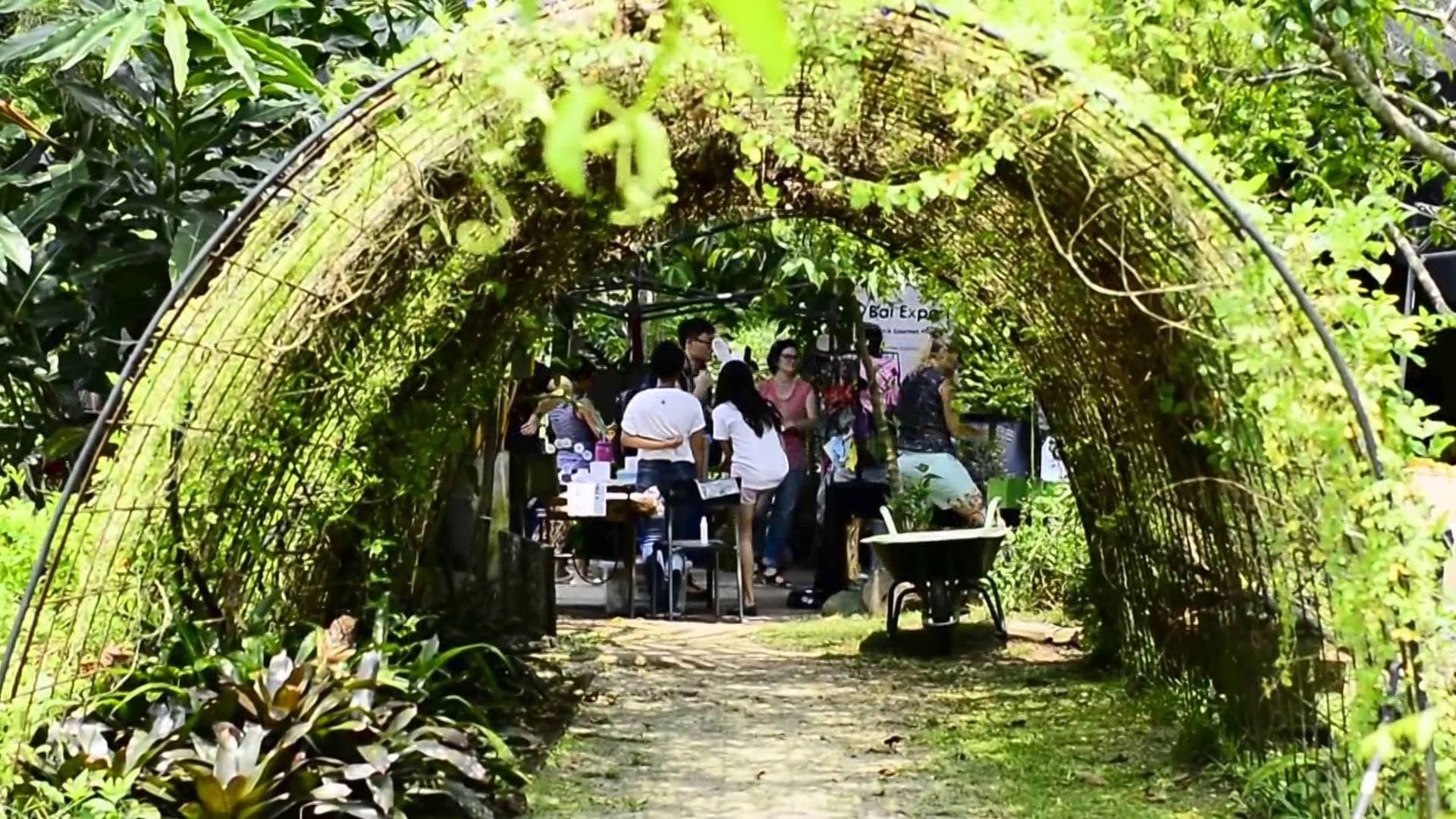 lịch trình đi singapore 4 ngày 3 đêm cho các cặp đôi: tham quan bollywood veggies