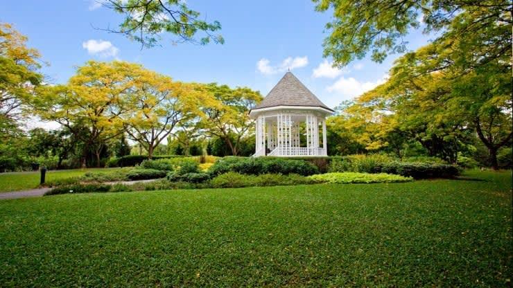 lịch trình đi singapore 4 ngày 3 đêm cho các cặp đôi: botanic gardens