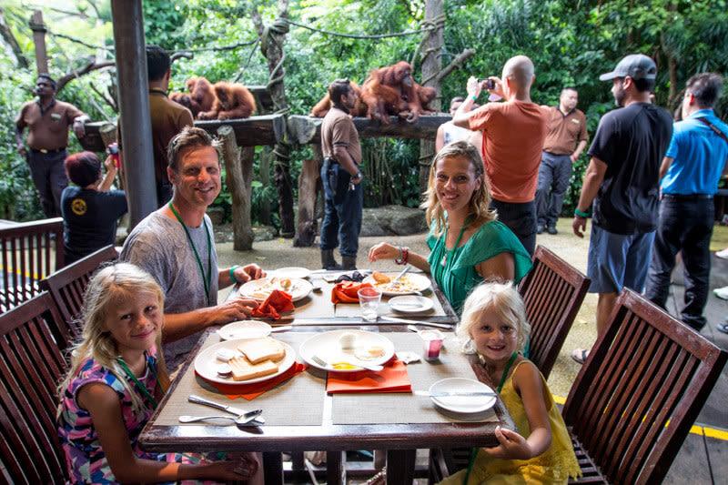 ăn trưa với đười ươi trong lịch trình đi singapore dịp 30/4 cho gia đình