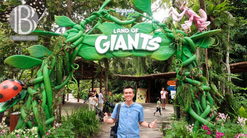 lich trinh du lich tu tuc singapore mot minh dip le 30 4 tu travel blogger bill balo 230418 09