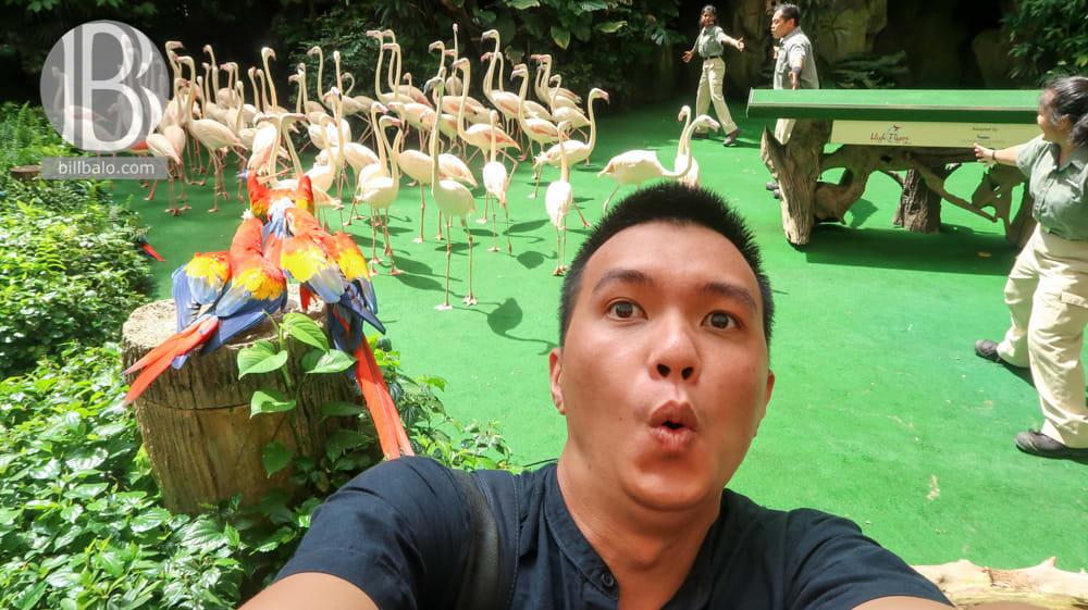 lich trinh du lich tu tuc singapore mot minh dip le 30 4 tu travel blogger bill balo 230418 11