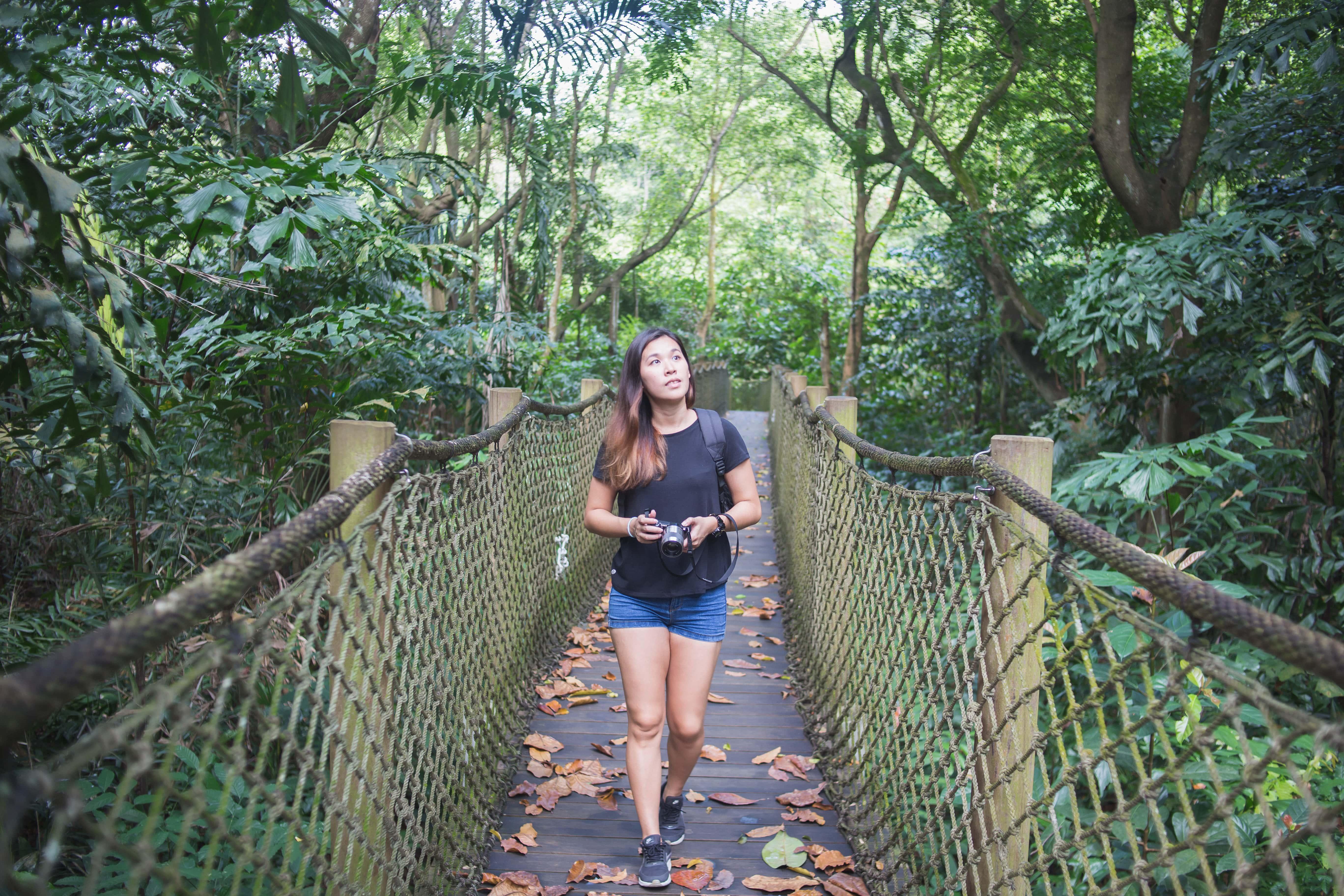 thăm khu bảo tồn sungei buloh ở phía tây singapore