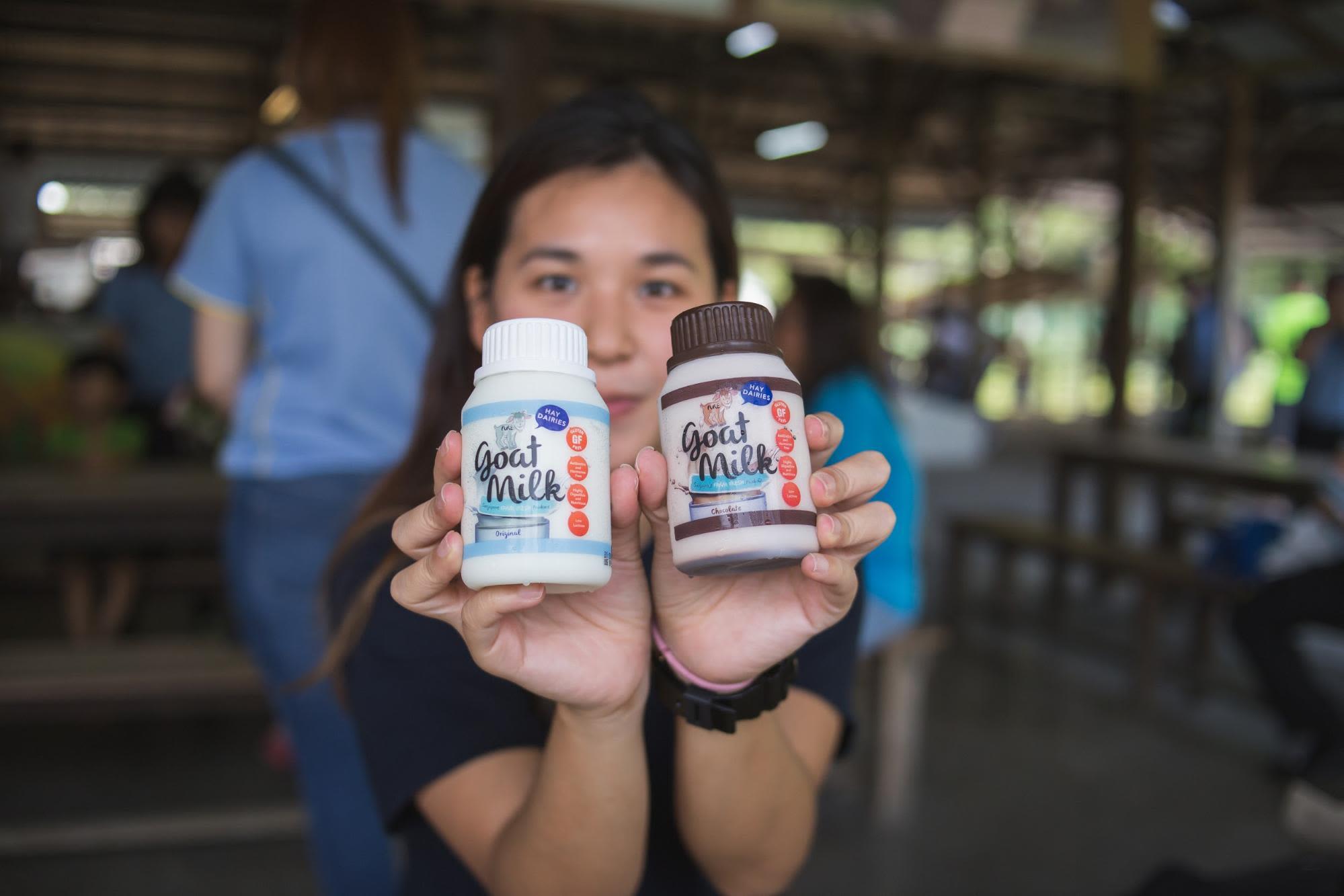 mua sữa dê ở trang trại sữa phía tây singapore