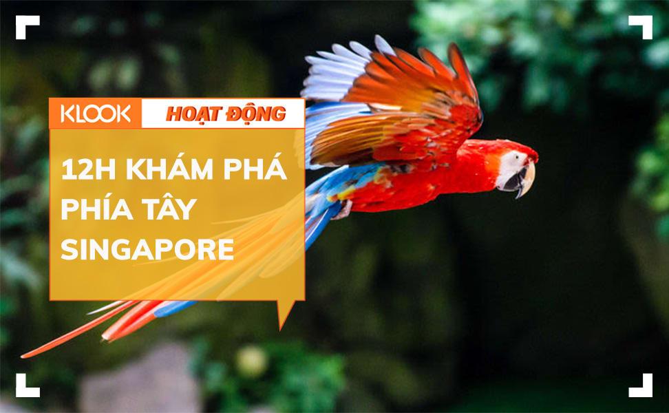 Những hoạt động du lịch hấp dẫn ít người biết ở phía tây Singapore 1