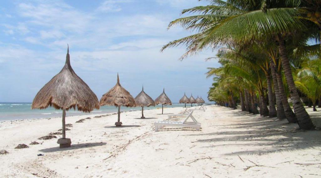 đảo panglao có một trong những bãi biển đẹp ở philippines