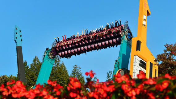 Double Rock Spin Everland