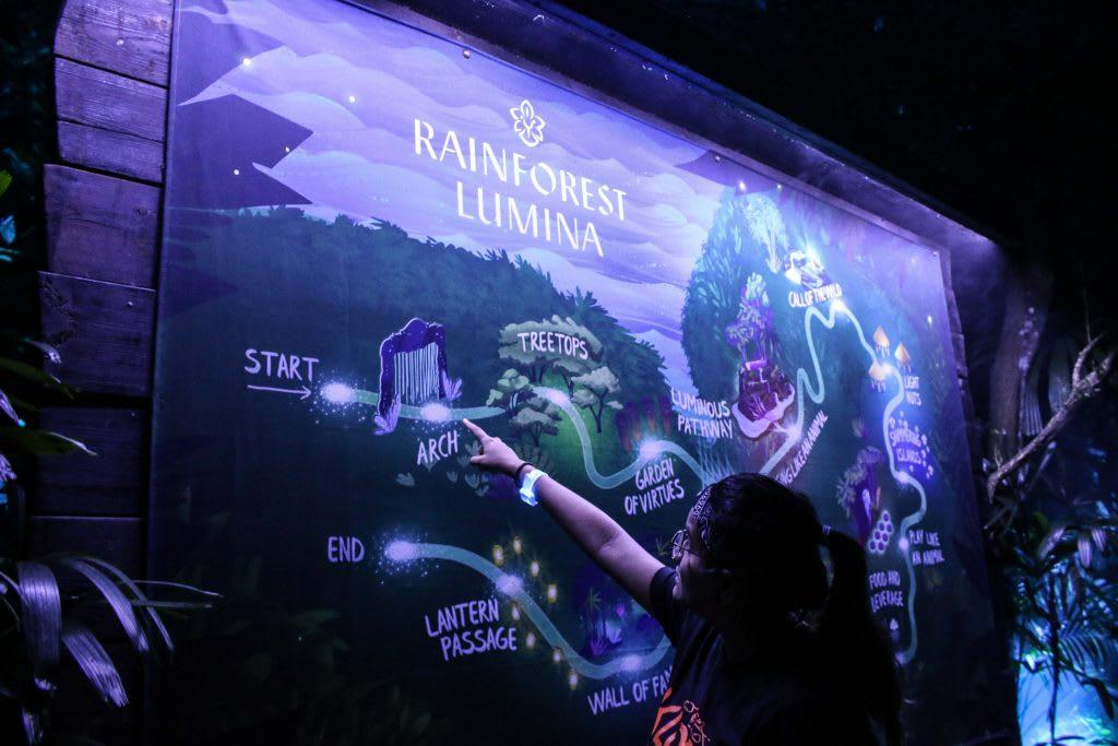 bản đồ rừng mưa ánh sáng tại singapore zoo