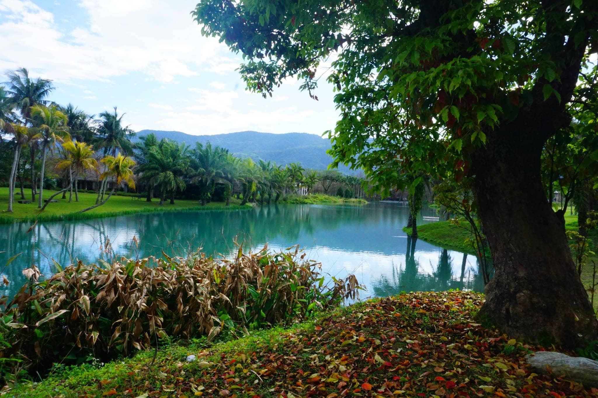 khám phá thiên nhiên đài loan: rừng quốc gia ở hoa liên