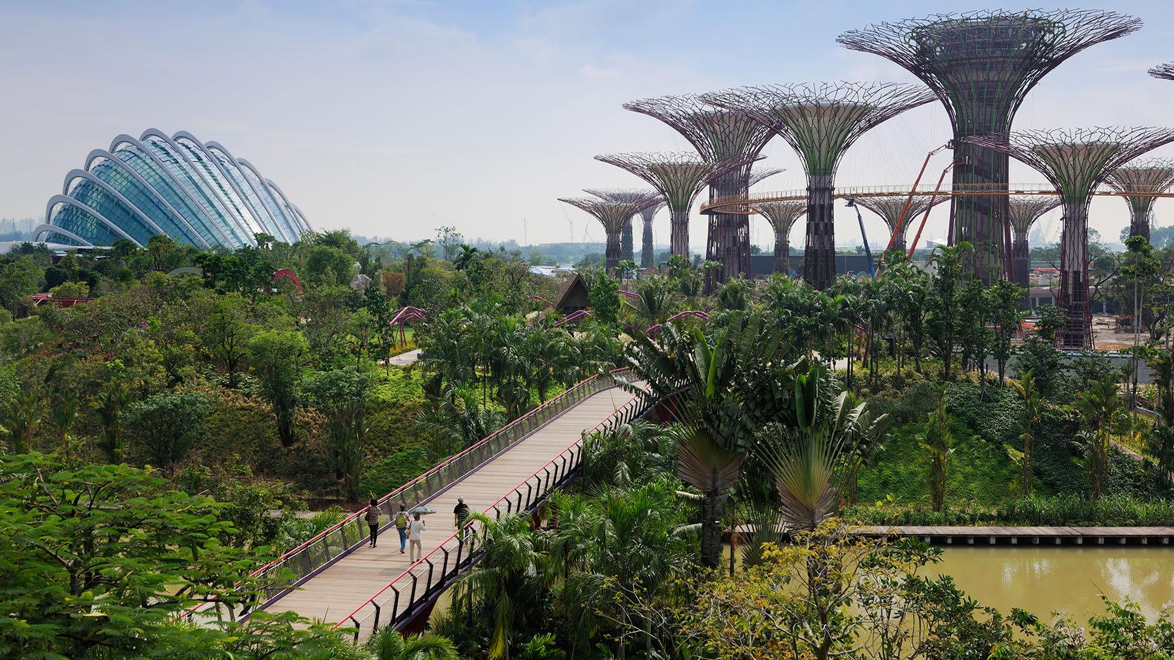 địa điểm du lịch dịp quốc khánh dành cho gia đình: gardens by the bay