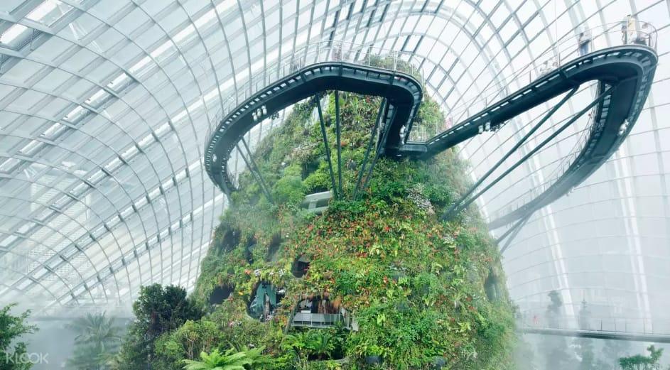 khu vực cloud forest tại gardens by the bay singapore