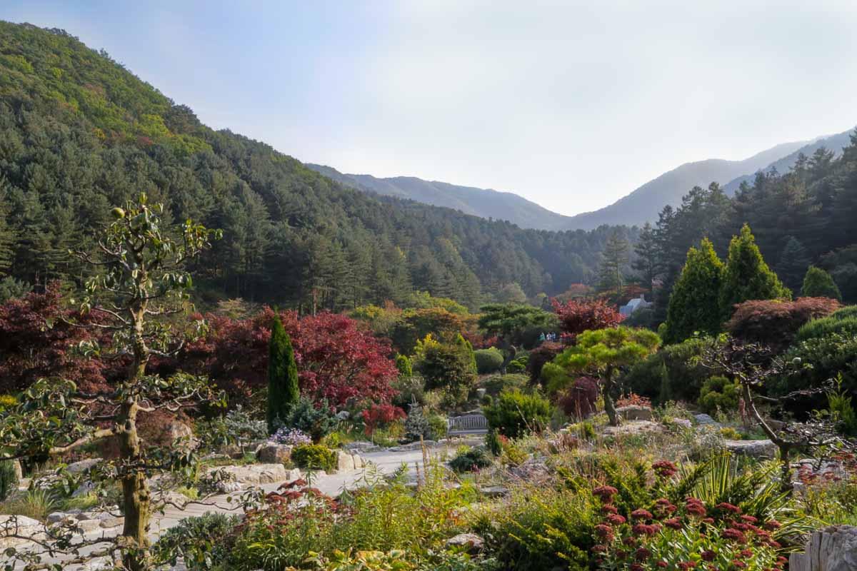 garden of morning calm tại hàn quốc