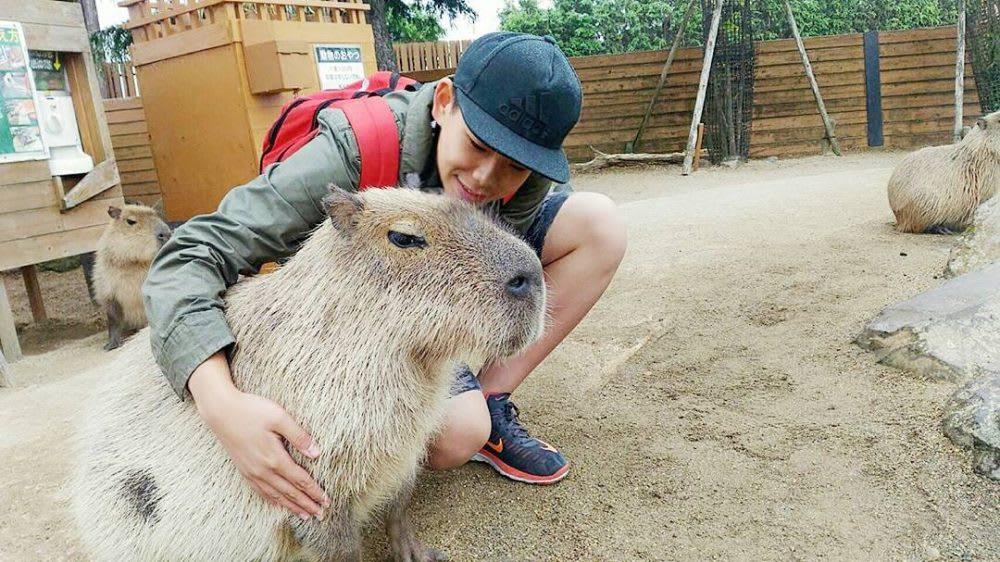 chuột lang khổng lồ tại vương quốc động vật nasu