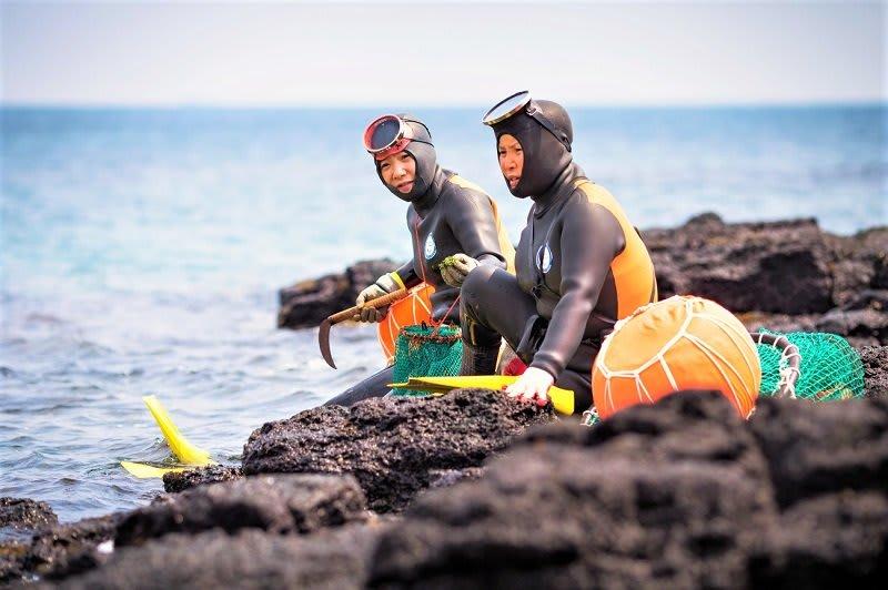 nữ thợ lặn ở jeju