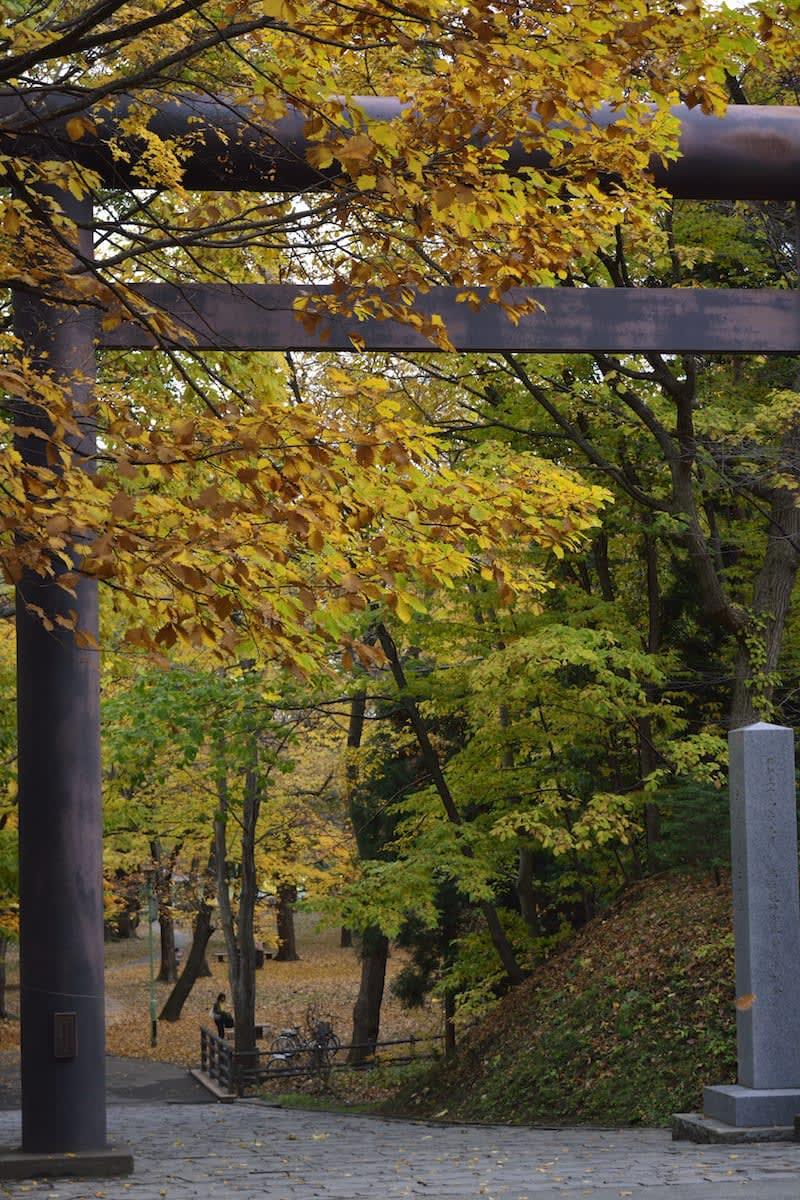 lá thu tại đền thờ hokkaido
