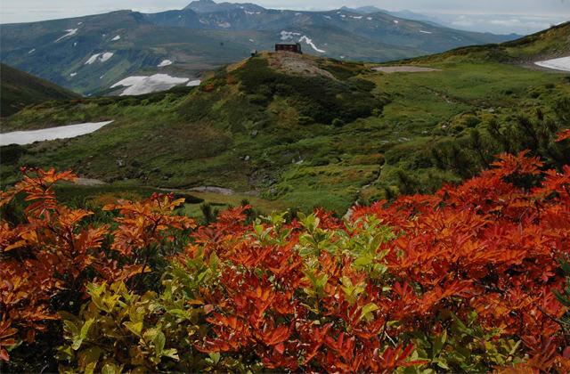 lá thu đỏ tại hẻm núi Sounkyo