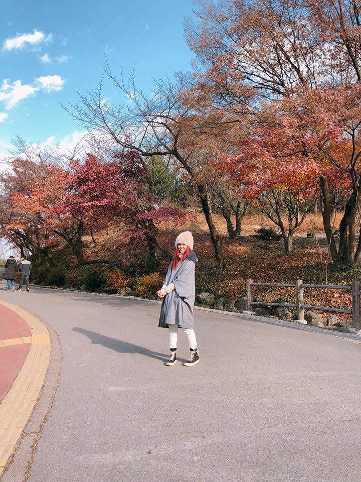 con đường seoul mùa thu