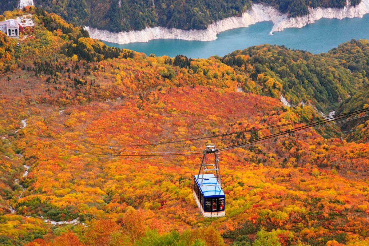 cáp treo Mt. Fuji Panoramic Ropeway