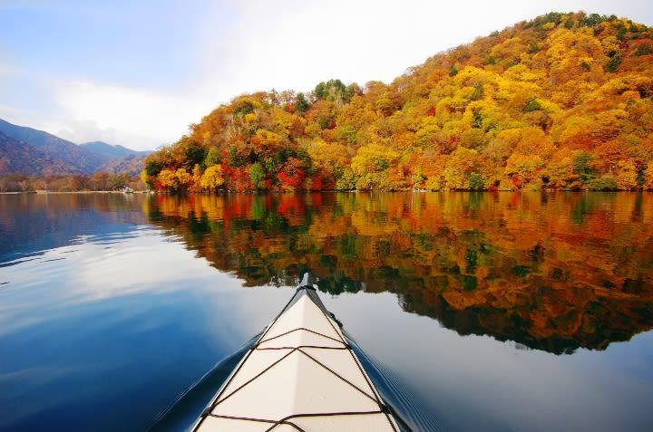 hồ và rừng lá thu vàng tại kanto