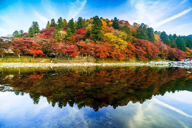 hồ và rừng lá thu tại tokai