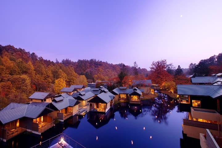 ngôi làng và rừng lá vàng tại hokuriku nhìn từ trên cao