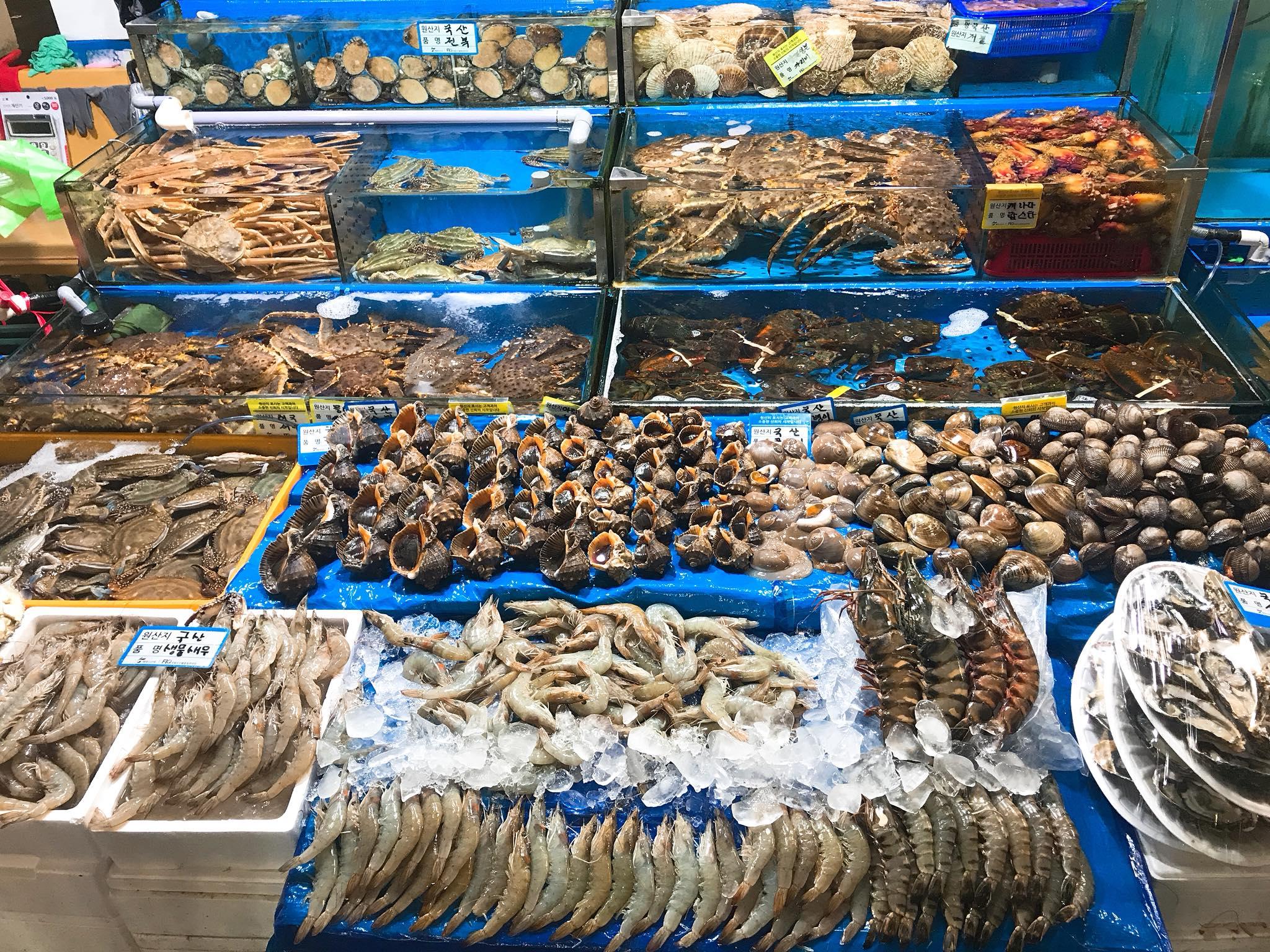 hải sản tươi sống tại chợ cá Noryanggjin