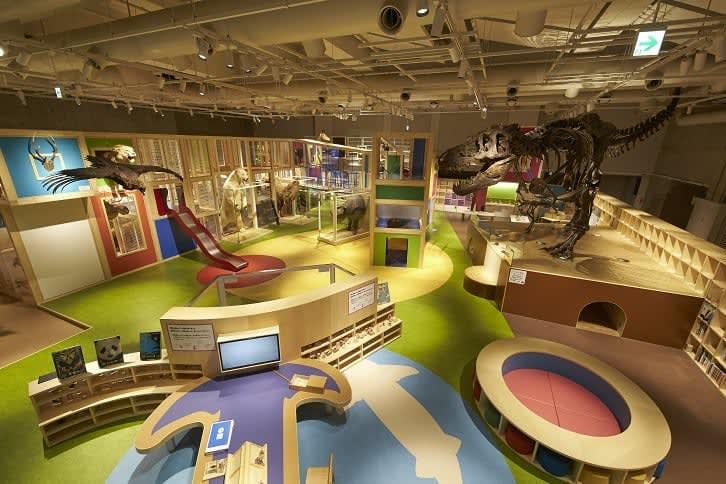 bên trong bảo tàng Tự nhiên và Khoa học quốc gia