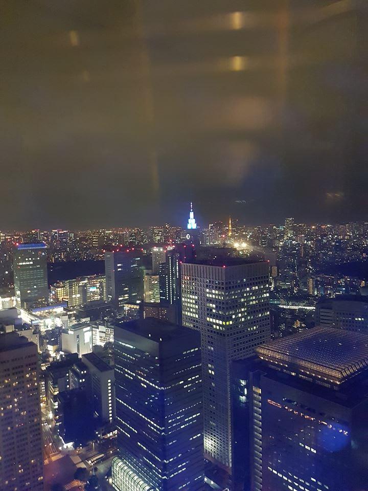 góc nhìn từ đài quan sát tòa nhà chính phủ tokyo