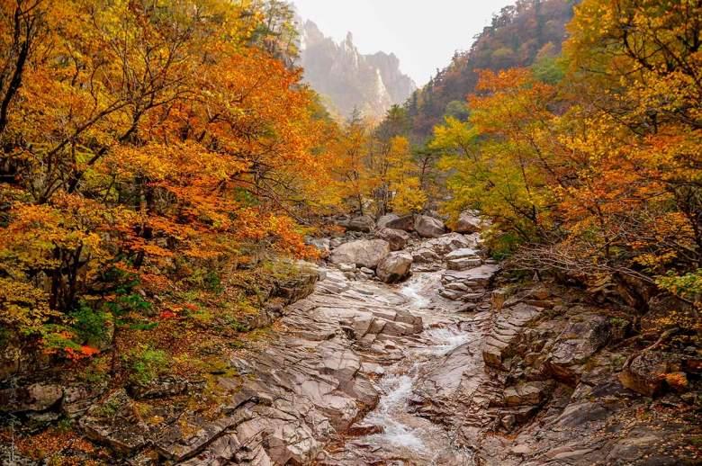 mùa thu tại seoraksan