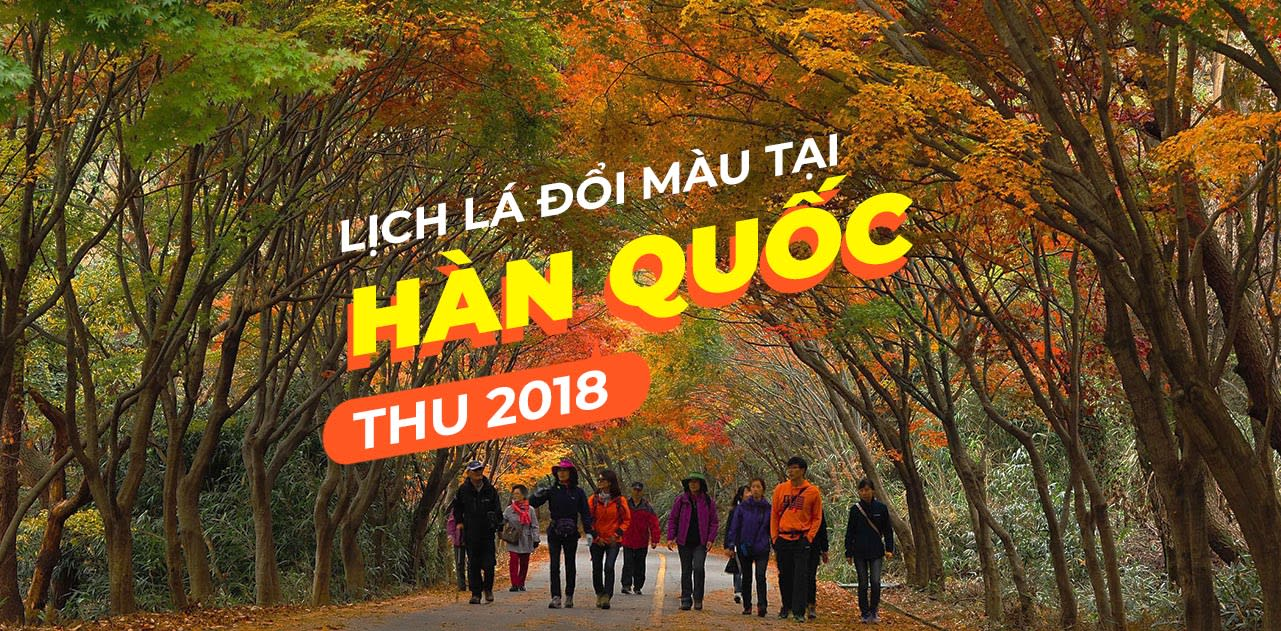 ngam han quoc chuyen mau la nam 2018 cover