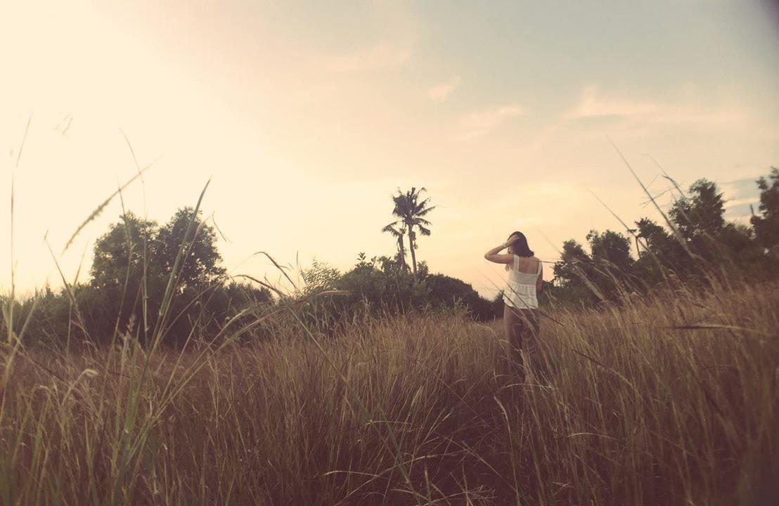 bãi cỏ lau gần blue lagoon