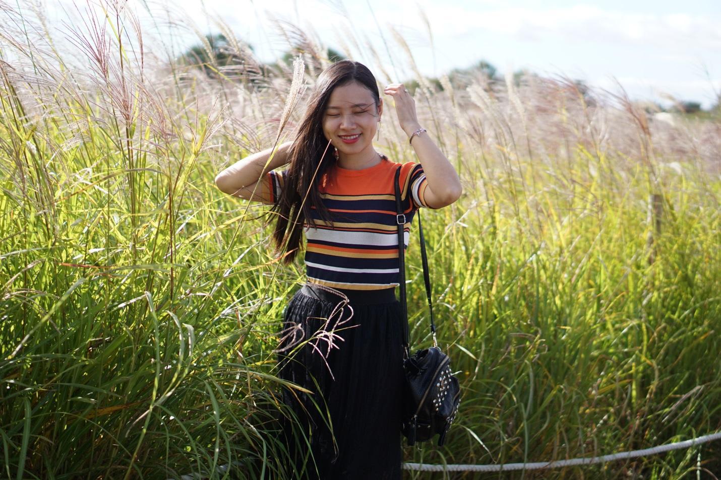 cánh đồng cỏ lau tại haneul park