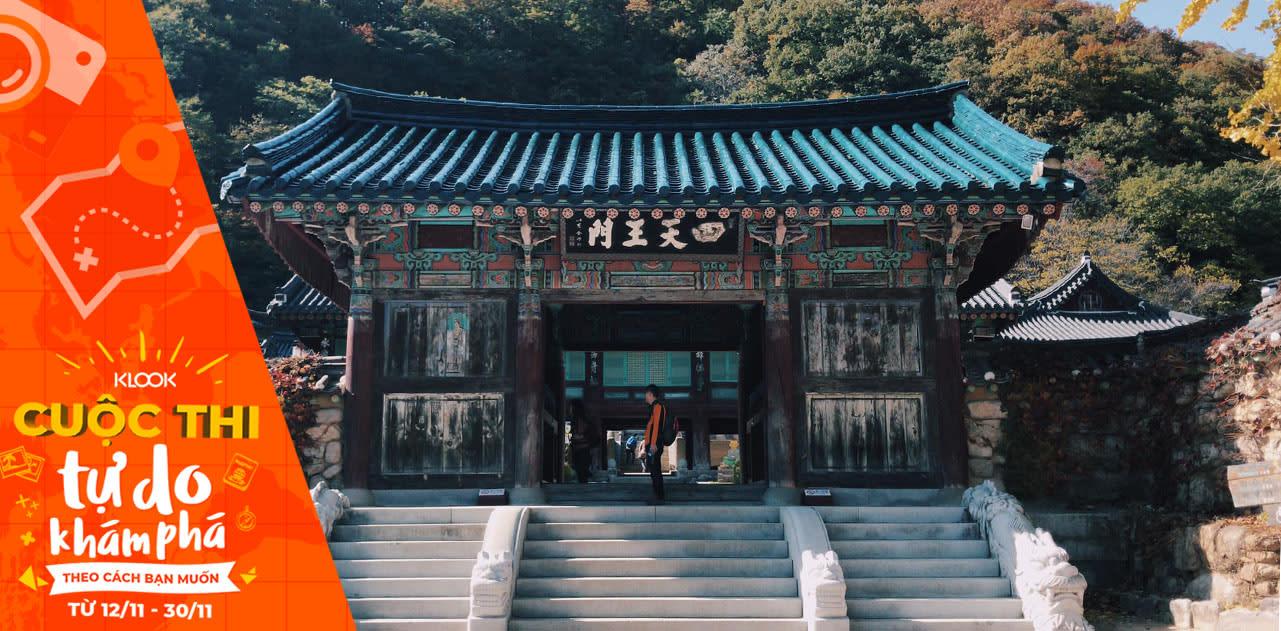 Hành trình săn lá đỏ mùa thu tại Seoul thơ mộng 1